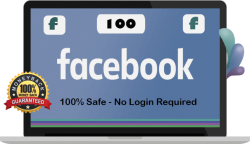 100 Facebook Page Likes UK